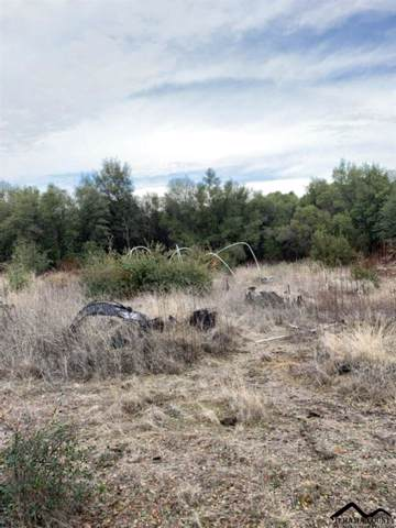 Lanes Valley Road, Paynes Creek, CA 96075 (#20191474) :: Josh Barker Real Estate Advisors
