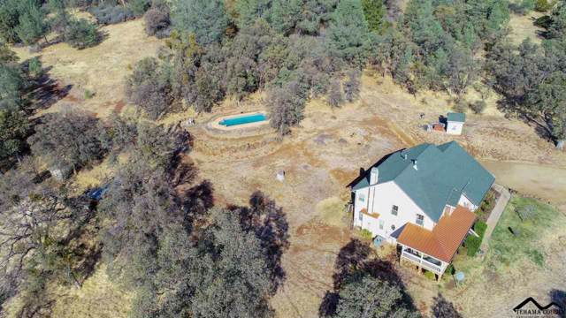 31500 Short Hill Drive, Shingletown, CA 96088 (#20191494) :: Wise House Realty