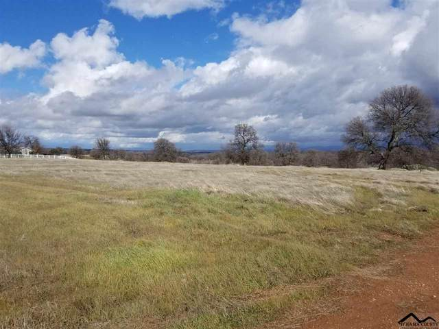 Lot 63 River Downs Way, Cottonwood, CA 96022 (#20200219) :: Wise House Realty