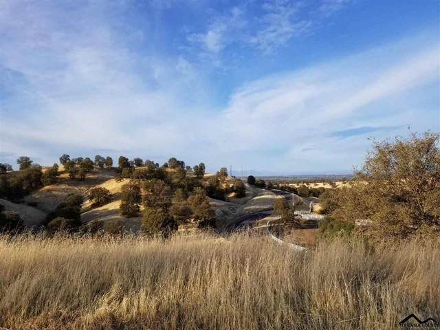 Lot 79 River Downs Way, Cottonwood, CA 96022 (#20200220) :: Wise House Realty