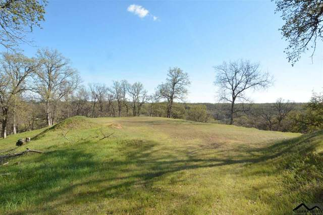 Lot 90,91 Stallion Drive, Red Bluff, CA 96080 (#20200261) :: Wise House Realty