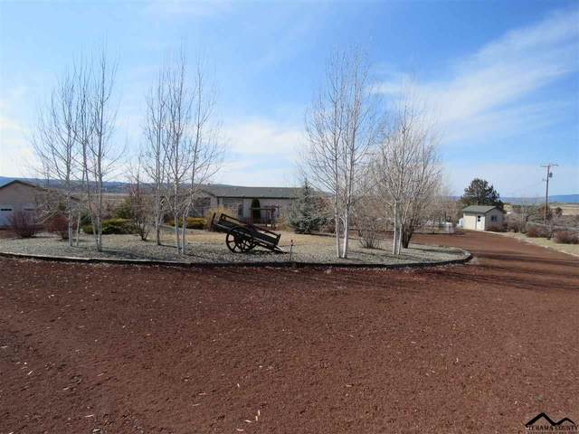 674900 Ash Valley Road, Adin, CA 96006 (#20200297) :: Wise House Realty