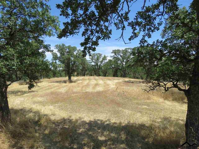 22568 Rio Robles Drive, Red Bluff, CA 96080 (#20200462) :: Wise House Realty