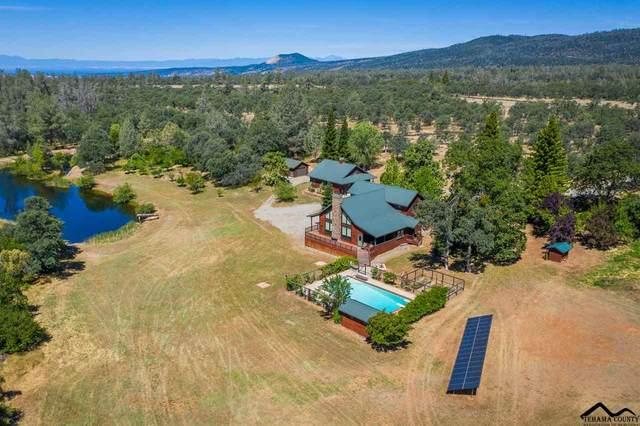 31680 Rock Creek Road, Manton, CA 96059 (#20200542) :: Wise House Realty