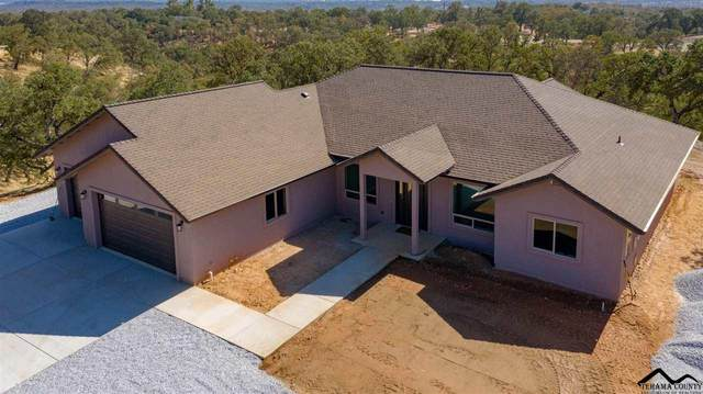 21735 Hidy, Red Bluff, CA 96080 (#20200627) :: Wise House Realty