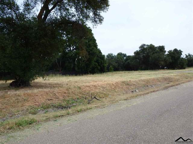 2 Josie Street, Los Molinos, CA 96055 (#20200674) :: Wise House Realty