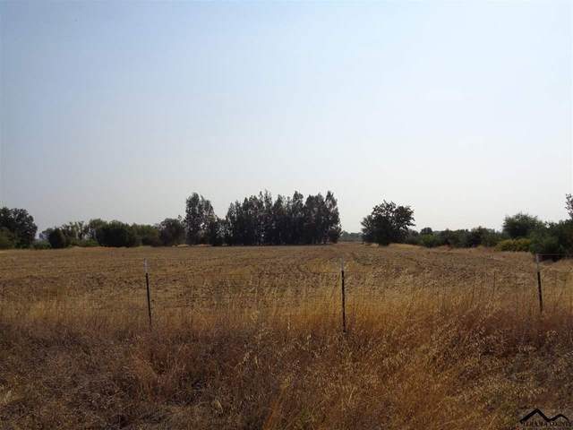 2920 State Highway 99W, Corning, CA 96021 (#20200757) :: Wise House Realty