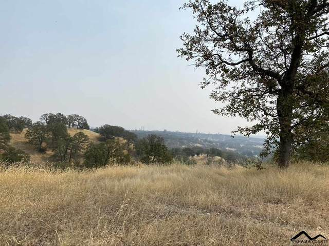Lot 12 Happy Valley Trail, Cottonwood, CA 96022 (#20200825) :: Wise House Realty