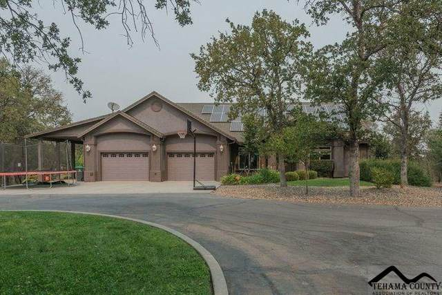 20045 Amethyst Court, Cottonwood, CA 96022 (#20200904) :: Wise House Realty