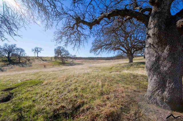 Lot 2 Happy Valley Trail, Cottonwood, CA 96022 (#20210088) :: Wise House Realty