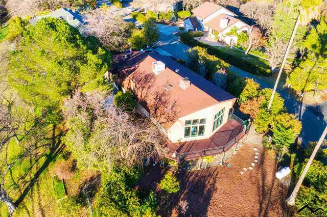 14575 Carriage Lane, Red Bluff, CA 96080 (#20210102) :: Wise House Realty
