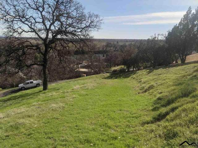 14585 Sunny Ridge Drive, Red Bluff, CA 96080 (#20210142) :: Wise House Realty