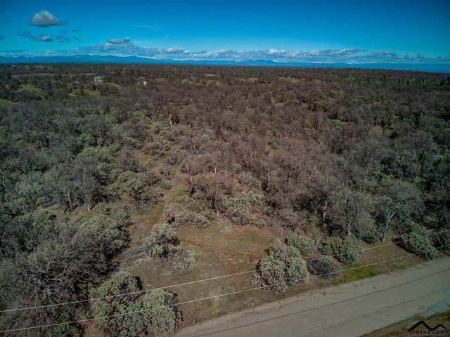 0 South Lake Road, Cottonwood, CA 96022 (#20210165) :: Wise House Realty