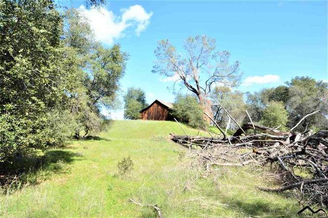 42 Highway 36 West, Red Bluff, CA 96080 (#20210239) :: Wise House Realty