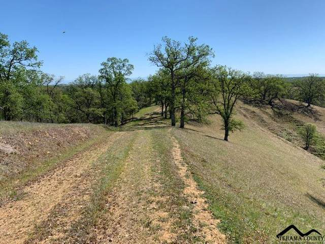 13975 Northridge Drive, Red Bluff, CA 96080 (#20210284) :: Wise House Realty