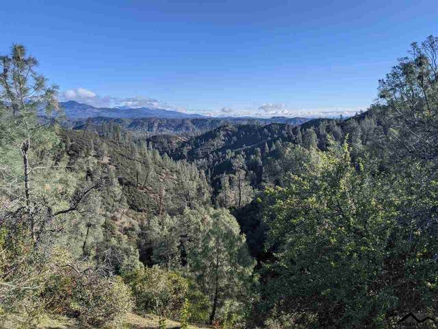 000 Hwy 36 W, Platina, CA 96076 (#20210305) :: Wise House Realty