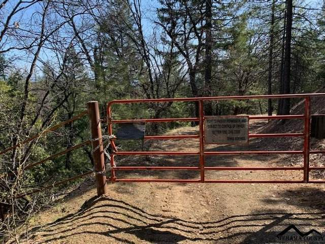 Tedoc Road, Red Bluff, CA 96080 (#20210345) :: Wise House Realty