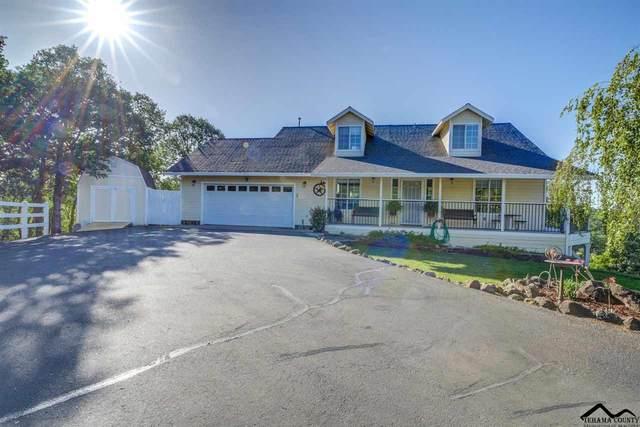 18753 Saddleback Ridge Lp., Cottonwood, CA 96022 (#20210445) :: Wise House Realty