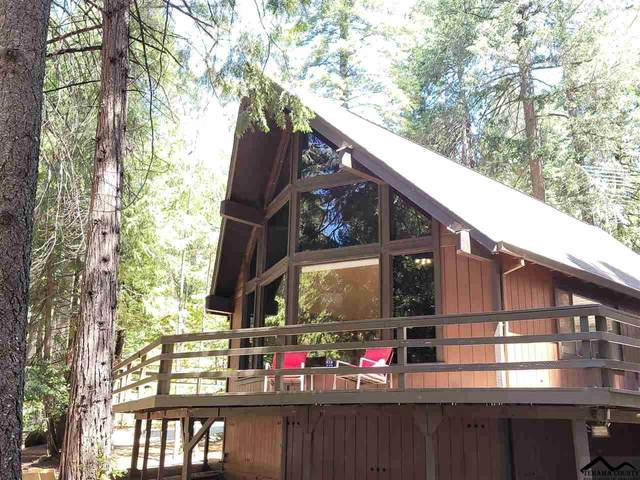 15016 Jack Pine Lane, Magalia, CA 95954 (#20210509) :: Wise House Realty