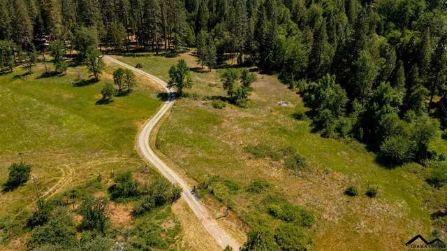29831 Hwy 299 E, Round Mountain, CA 96084 (#20210536) :: Wise House Realty