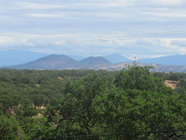 21300 Meadowgate Drive, Red Bluff, CA 96080 (#20210575) :: Wise House Realty