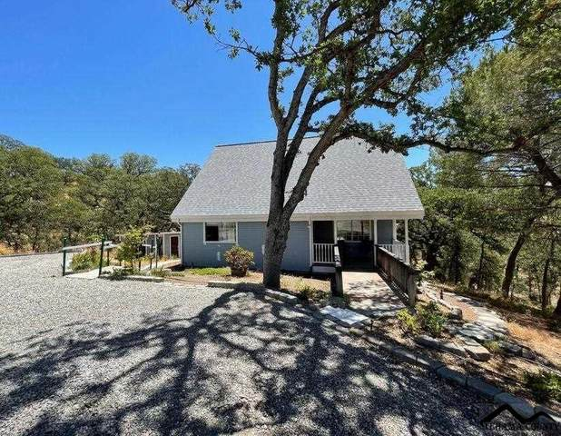 6987 Buggy Whip Lane, Corning, CA 96021 (#20210687) :: Wise House Realty