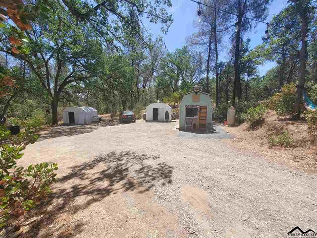 15920 North Mendocino Drive, Corning, CA 96021 (#20210700) :: Wise House Realty