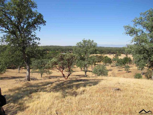 19110 Pine Creek Road, Red Bluff, CA 96080 (#20210709) :: Wise House Realty
