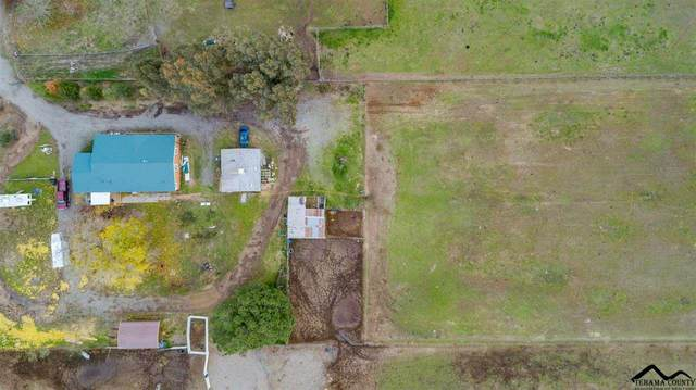 21855 Simpson Road, Corning, CA 96021 (#20210750) :: Wise House Realty