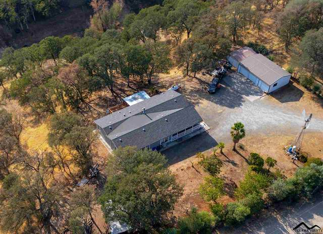 14585 Betz Lane, Red Bluff, CA 96080 (#20210803) :: Wise House Realty