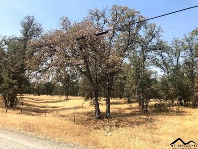 lot 26 Kiowa Lane, Cottonwood, CA 96022 (#20210808) :: Wise House Realty