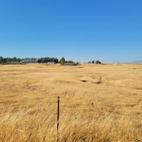 0000 Jewet Creek Road, Corning, CA 96021 (#20210888) :: Wise House Realty