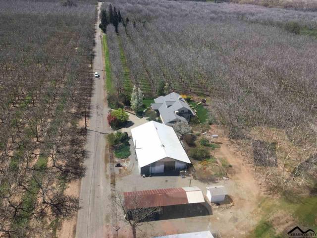24340 Eldrid Avenue, Red Bluff, CA 96080 (#20190361) :: Josh Barker Real Estate Advisors