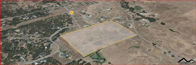 30 Acres Manter Court, Red Bluff, CA 96080 (#20200023) :: Wise House Realty