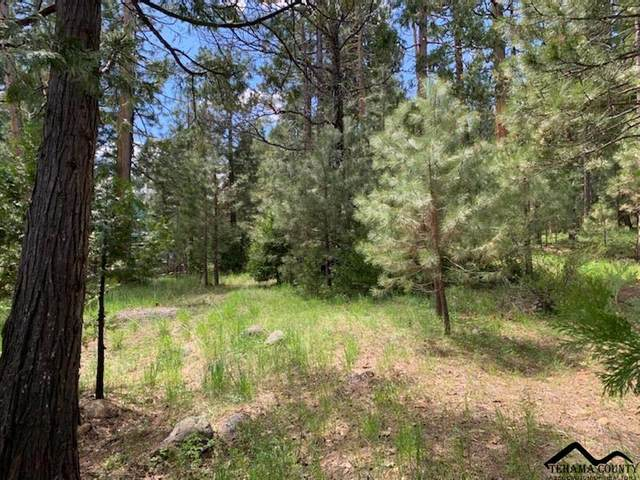 Beresford Way, Mineral, CA 96061 (#20210498) :: Wise House Realty