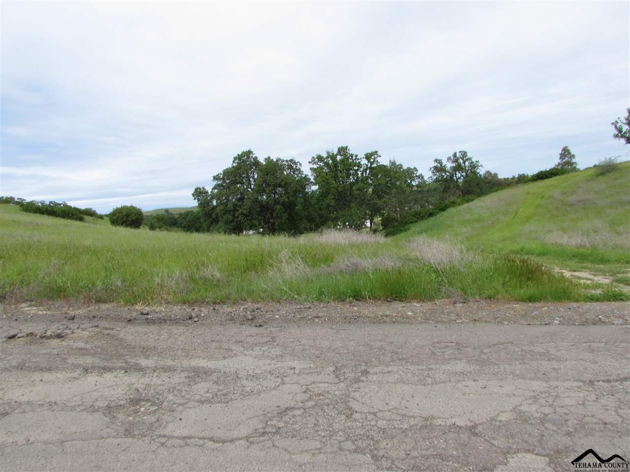 17310 Hillcrest Drive - Photo 1
