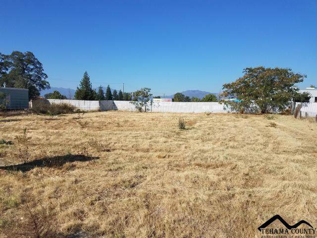 1150 Grand Avenue, Redding, CA 96003 (#20191022) :: Wise House Realty