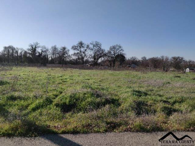 000 Marek Estates Dr., Los Molinos, CA 96055 (#20200154) :: Josh Barker Real Estate Advisors