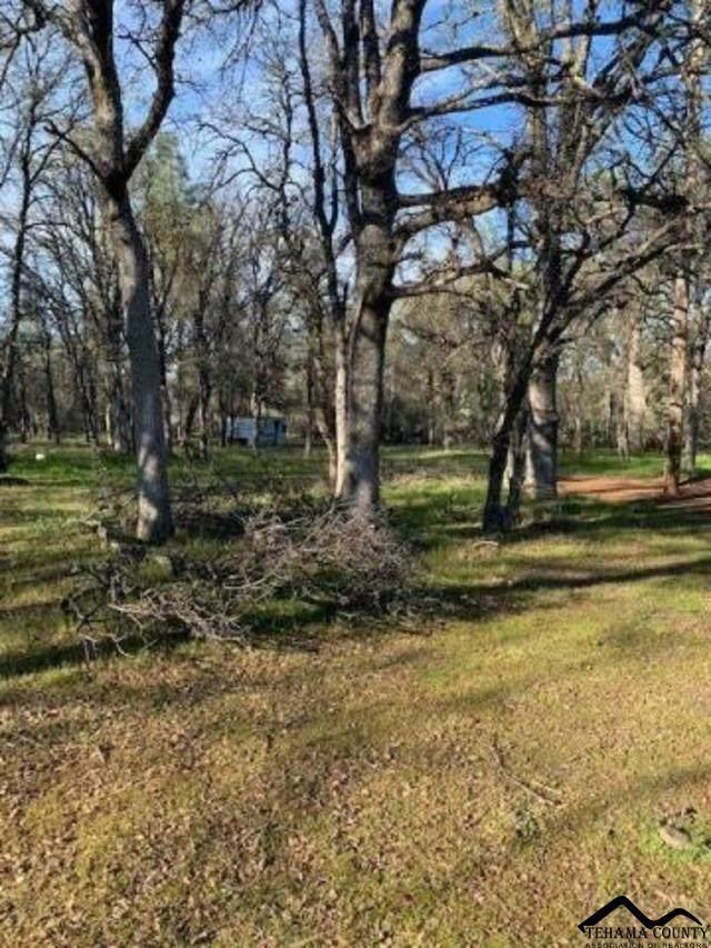 16570 Richard Drive, Cottonwood, CA 96022 (#20200326) :: Josh Barker Real Estate Advisors