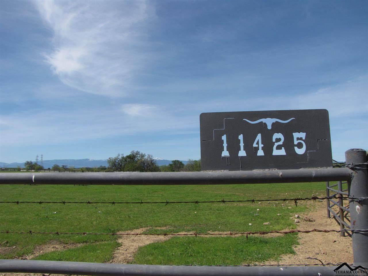 11425 Paskenta Road - Photo 1