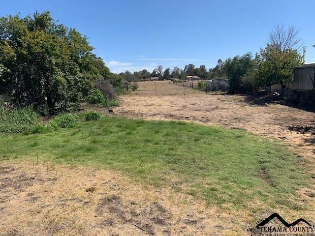 000 Blackburn Avenue, Corning, CA 96021 (#20200681) :: Wise House Realty