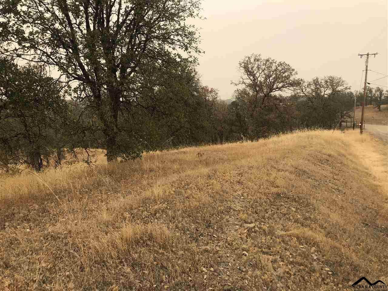 00 Ranchero Drive - Photo 1