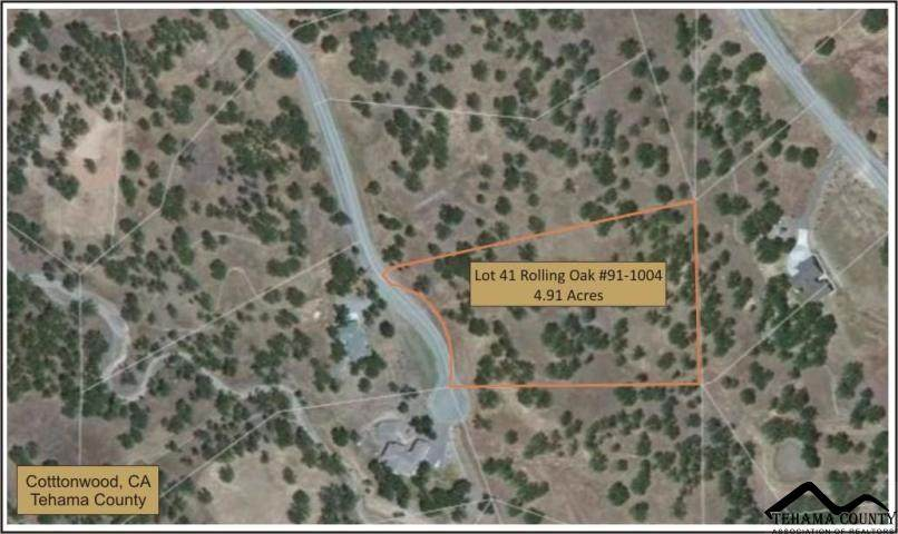 Lot 41 Deer Crest Trail - Photo 1