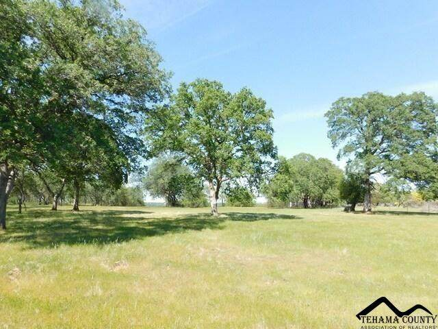 lot 12 Lazy Lane, Red Bluff, CA 96080 (#20210601) :: Wise House Realty