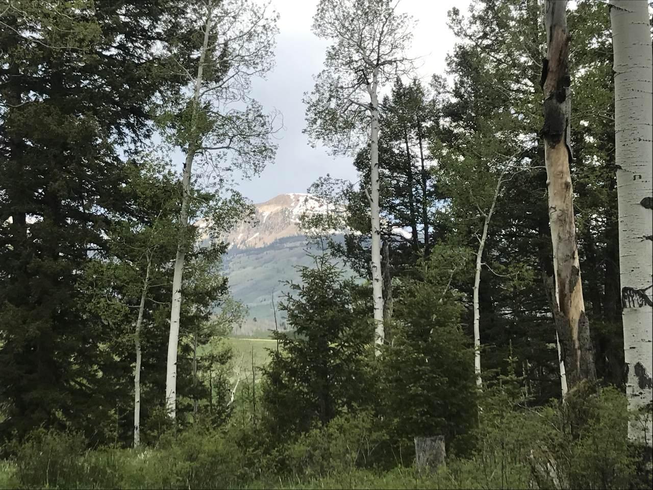 tbd Elk Wallow Road - Photo 1