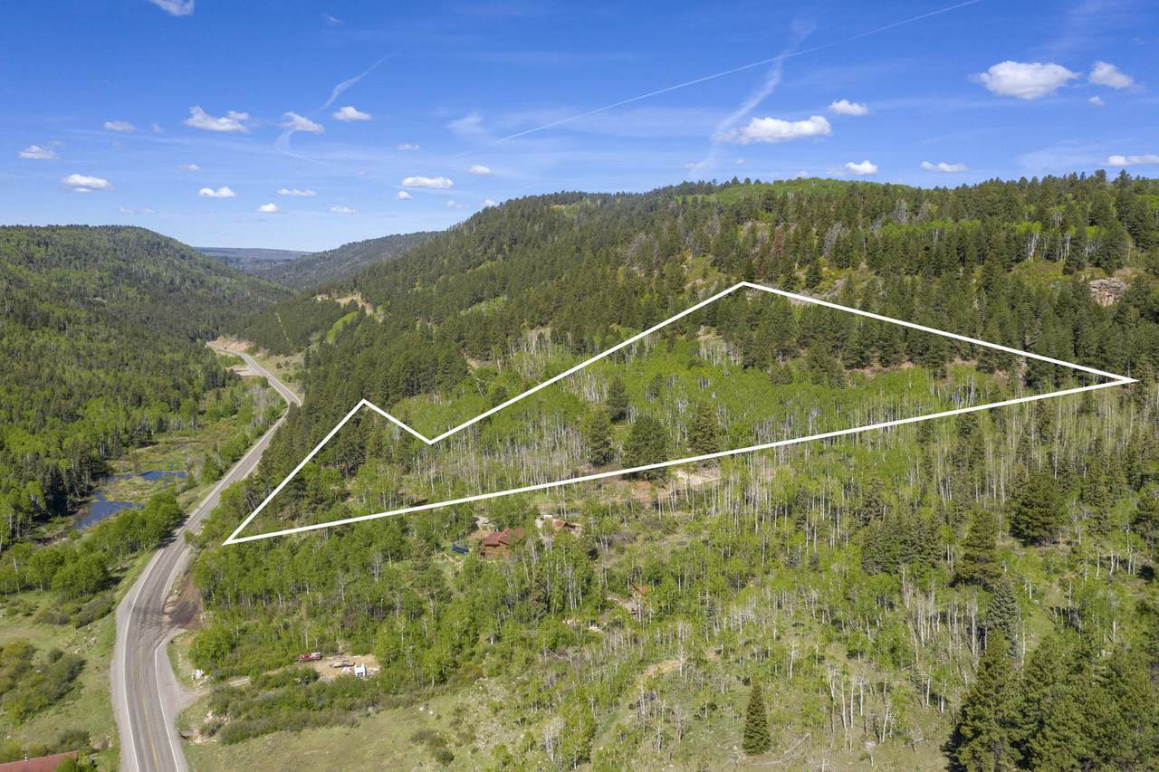Lot 1 Sky Mountain Ranch Road - Photo 1
