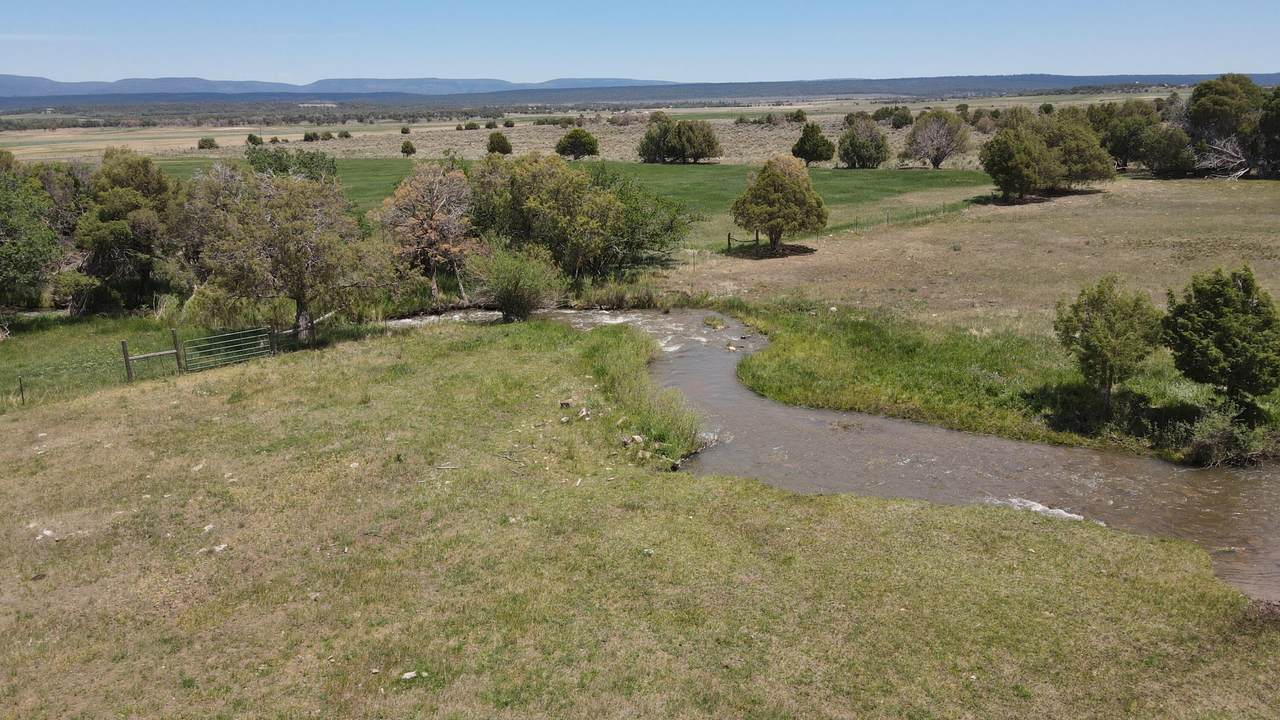 Lot A County Road Y43 - Photo 1