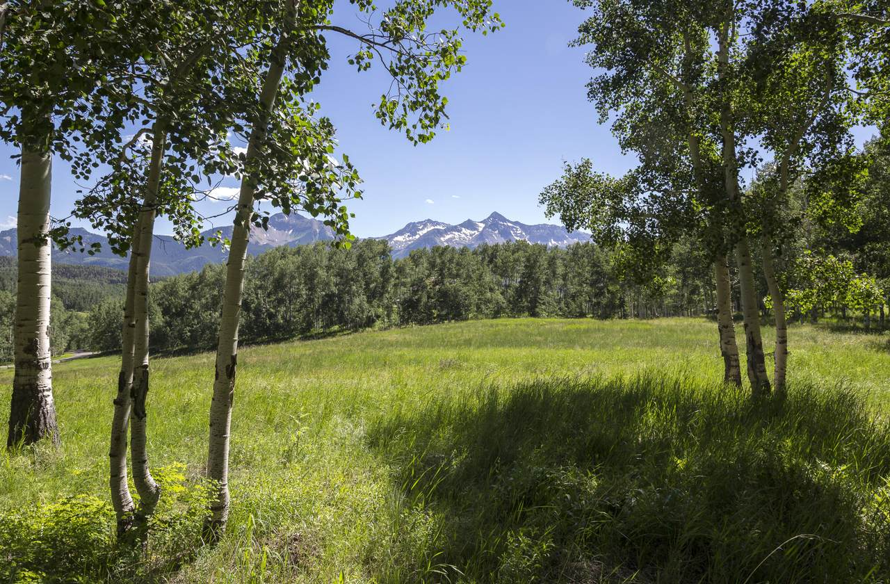 257 Saddle Horn Lane - Photo 1