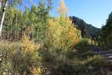 Lot 1 Sky Mountain Ranch Road - Photo 6