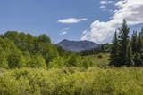 305 Katrina Springs Trail - Photo 10
